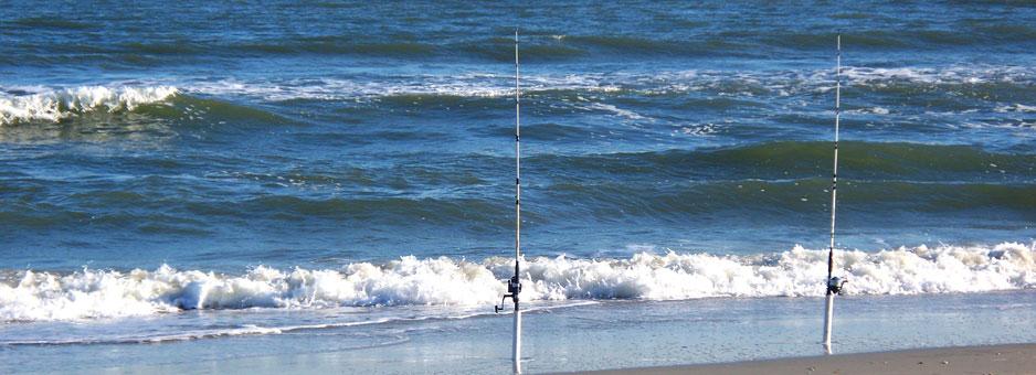 Belmar fishing club belmar nj for Ocean city nj surf fishing report
